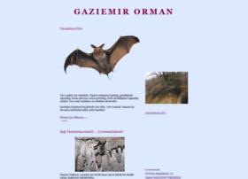 gaziemir-orman.blogspot.com