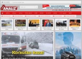 gebzeanaliz.com