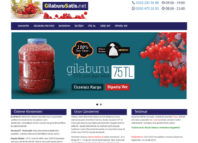 gilaburusatis.net