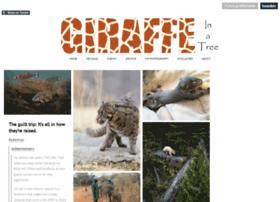 giraffeinatree.tumblr.com