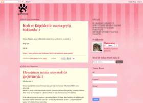 gizmocaa.blogspot.com.tr