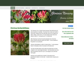 gloriosanursery.com.au