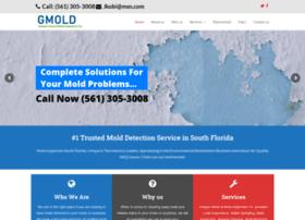 gmold.com