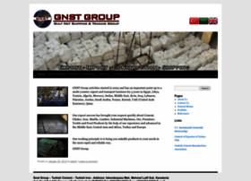 gnstgroup.com