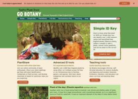 gobotany.newenglandwild.org