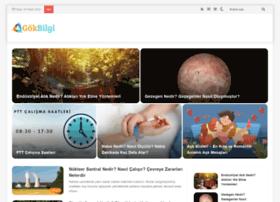 gokbilgi.com