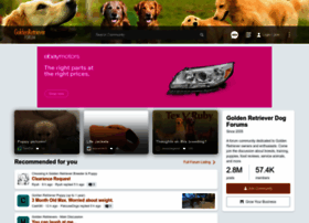 goldenretrieverforum.com