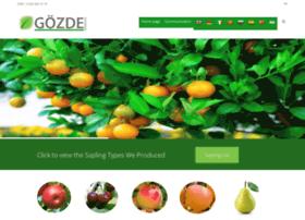 gozdefidan.com