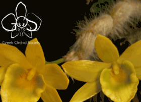 greekorchidsociety.org