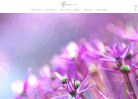 greenfusestock.com