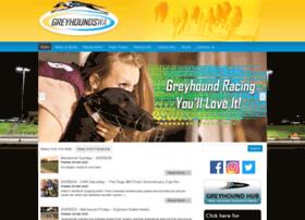 greyhoundswa.com.au