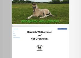 groenholm.de