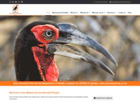 ground-hornbill.org.za