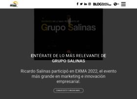 gruposalinas.com.mx