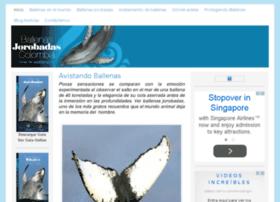 guiadeballenas.com