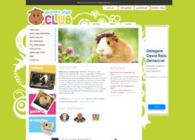 guineapigsclub.com