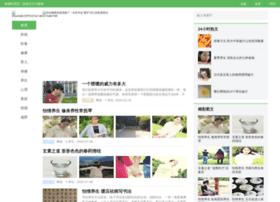 h4.com.cn