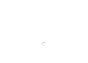hamann-fahrschule.de