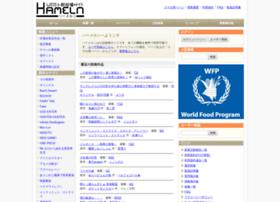 hamelnovel.com