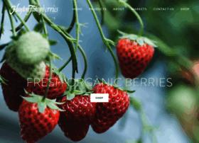 haytonfarmsberries.com