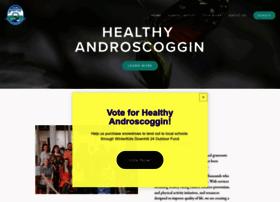 healthyandroscoggin.org