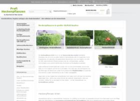 heckenpflanzen-profi.de