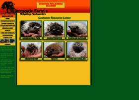 hedgehogheadquarters.com
