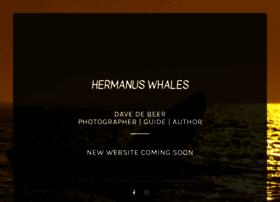 hermanuswhales.co.za
