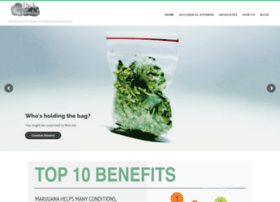 highandsuccessful.com