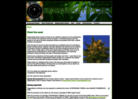 highestseeds.com