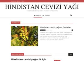 hindistanceviziyagi.net