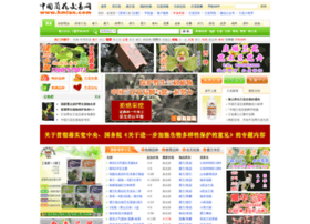 hmlan.com