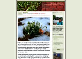 hoardedordinaries.wordpress.com