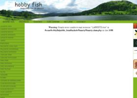 hobbyfish.ro