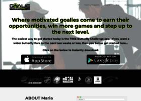 hockeytrainingpro.com