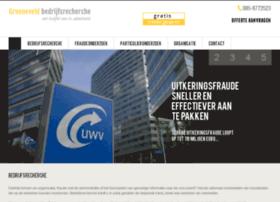hollbedrijfsrecherche.nl