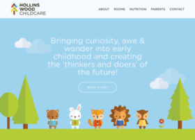 hollinswoodchildcare.co.uk