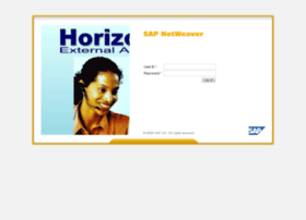 horizons.dowcorning.com