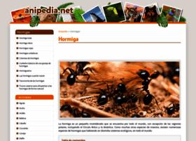 hormigas.anipedia.net