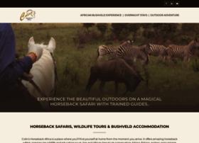 horsebackafrica.com