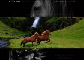 horsephotographyworkshops.com