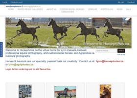 Horsephotos.ca