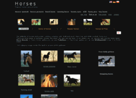 horses-photos.org