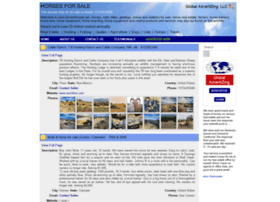 horsesforsale.net