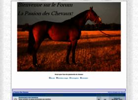 horsespassion.superforum.fr