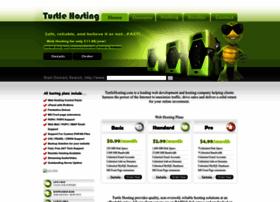 hostingturtle.com