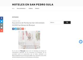 hotelessanpedrosula.com