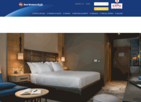 hotelexposofia.com