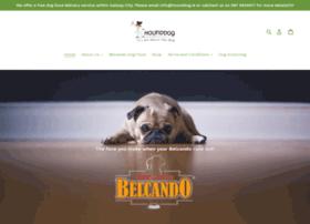 hound-dog.ie