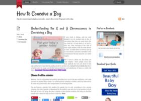 how-toconceiveaboy.com